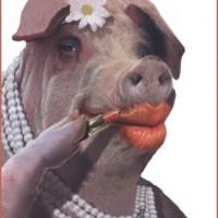 pig_lipstick