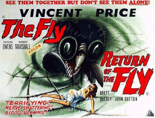 the-fly