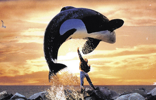 Free Willy Kinox.To